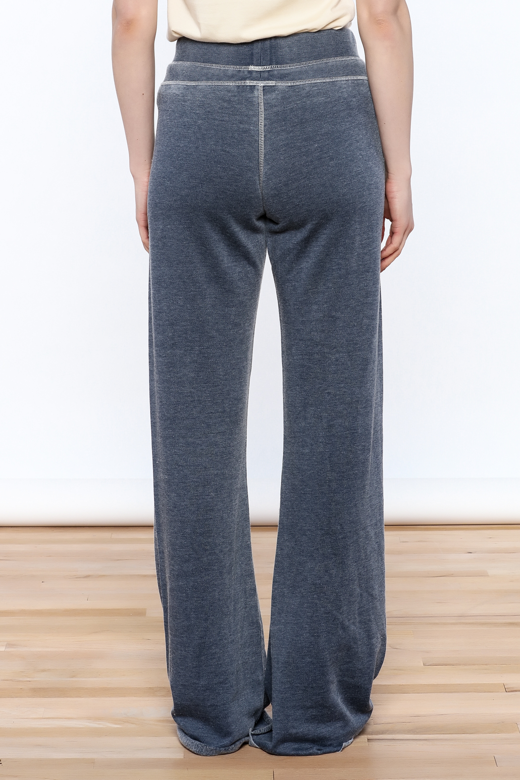 Zsupply Relaxed Lounge Pants - Back Cropped Image